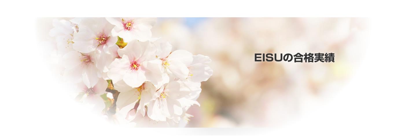 eisu-group